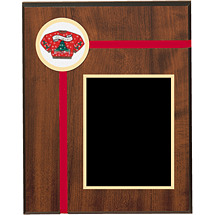 "8 x 10"" Red Velveteen Plaque"