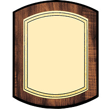 "8 x 10 - 9 x 12"" Gold Brass Plaque with Double-Dome Shape"