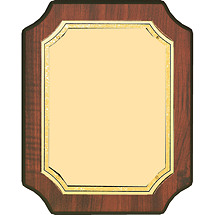 "8 x 10"" Gold Brass Plaque w/ Half Moon Corners"