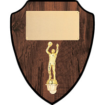 "10 x 12"" Walnut-Tone Wall Plaque with Gold Figure"