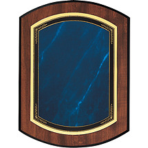 "Large Topaz Blue 9 x 12"" Double-Dome Plaque"