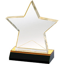 Custom Acrylic Star Award