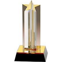 "3 3/4 x 7 1/4"" Lone Star Acrylic Award"
