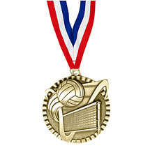 "2"" Volleyball Victorious Medal with Ribbon"