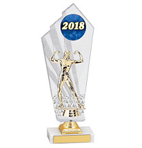 Large 2018 Acrylic Dated Gold Trophy - 11 1/2""