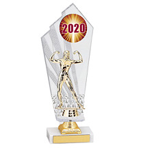 Large 2020 Acrylic Dated Gold Trophy - 11 1/2""