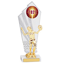 """Large 2021 Acrylic Dated Gold Trophy - 11 1/2"""""""