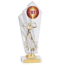 Large 2021 Acrylic Dated Gold Trophy - 11 1/2""