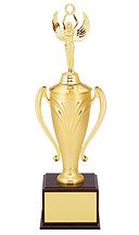 Gold Nylon Cup Trophy