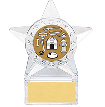 Clear Acrylic Star Emblem Trophy