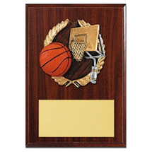 Basketball Plaque - Color Brushed Resin Cast Basketball