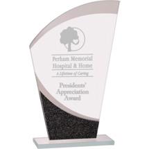 Modern Premier Designer Glass Award