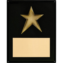 Black High Gloss Plaque with Star