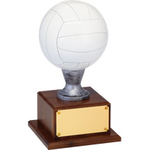 "16 1/2"" Resin Volleyball Trophy"