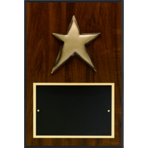 "8 x 12"" Modern Star Plaque"