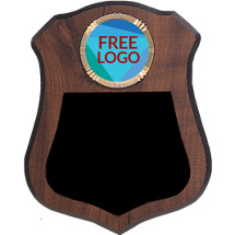 "Custom Plaque - 6 1/2 x 8"" Tear Drop Shield Plaque with Custom Logo"