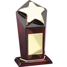 Rosewood Gold Star Pillar Award