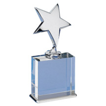 "4 x 8"" Clear Glass Star Award"