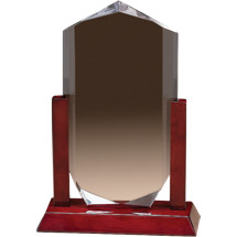 "6 1/2 x 10"" Removable Acrylic Award with Rosewood-Finish Base"