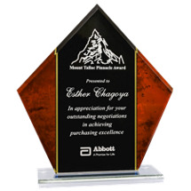 Red Acrylic Marble Stand-Up Award - 6 3/4 x 7 1/2""