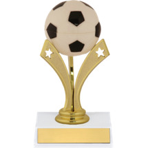 Soccer Trophy - Soccer Trophy with a Star Riser