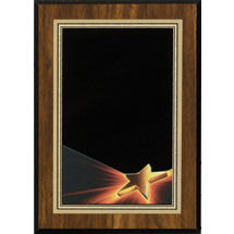 Star Shine Plaque with Star Image