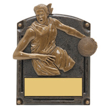 Basketball Trophy - Female - 3D Shadow Award