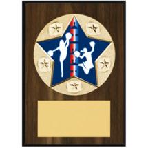 """Cheer Plaque - 5 x 7"""" Star Emblem Plaque"""