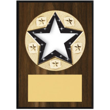"Star Plaque - 5 x 7"" Star-Shaped Emblem Plaque"