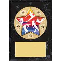 Dance Plaque - Star Emblem Plaque