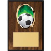 Soccer Plaque - Oval Emblem Plaque
