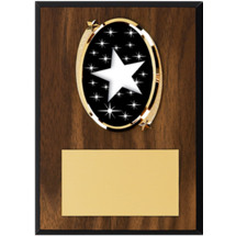 "Star Plaque - 5 x 7"" Oval Emblem Plaque"